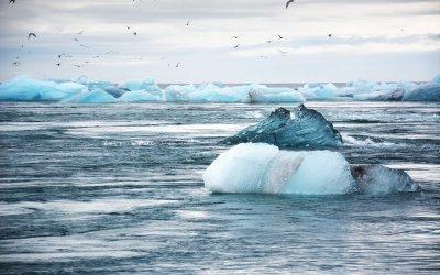 Basismodul Klimawandel